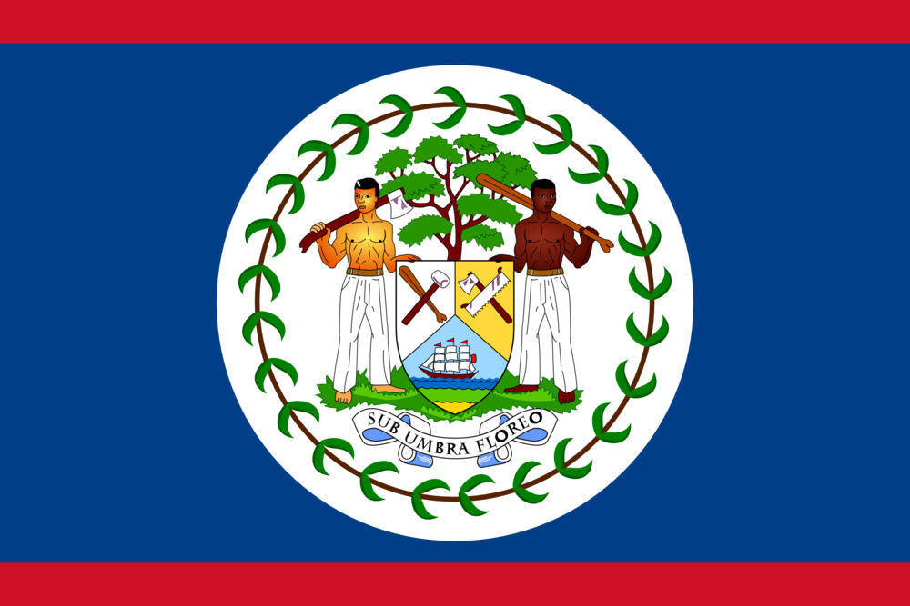 State flag of Belize