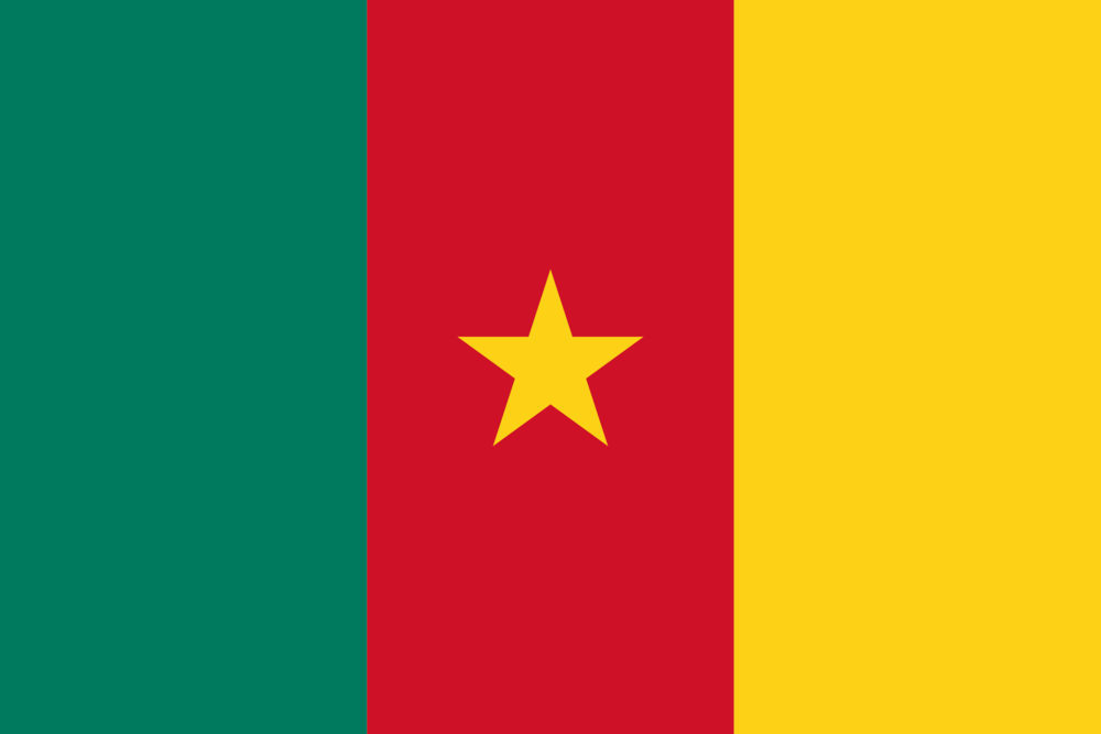State flag of Cameroon