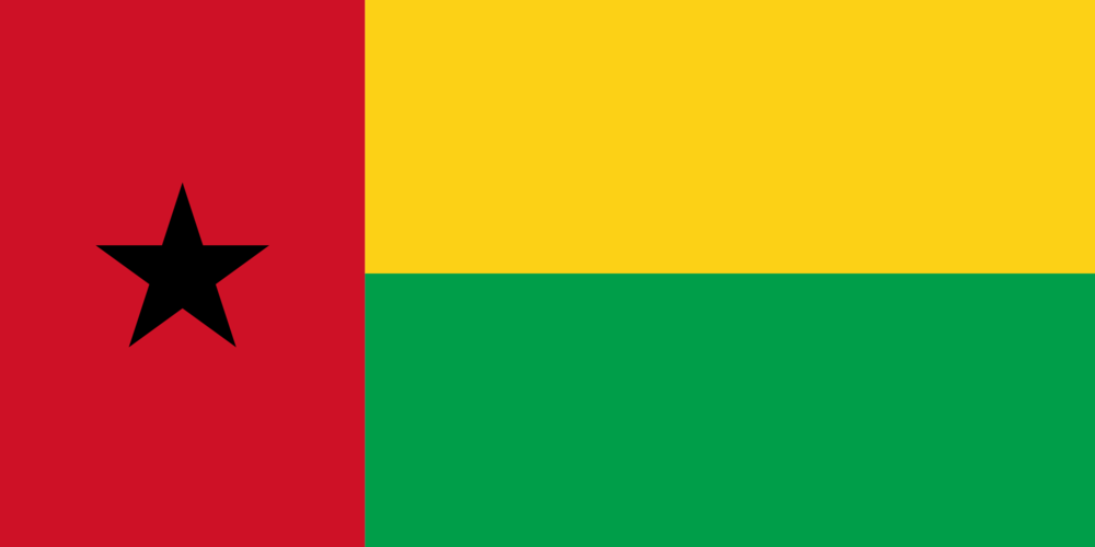 State flag of Guinea bissau