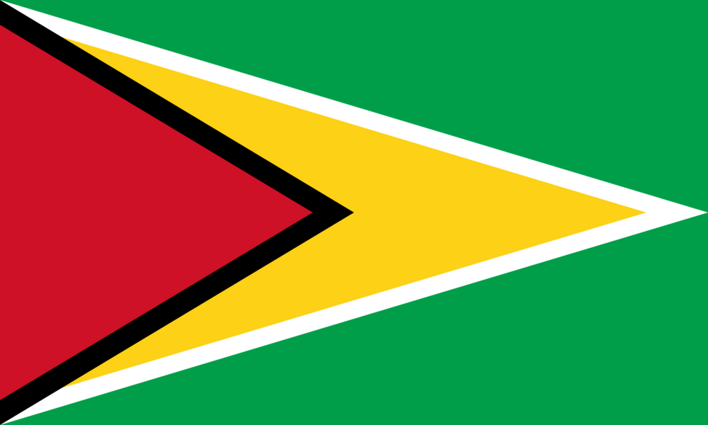 State flag of Guyana