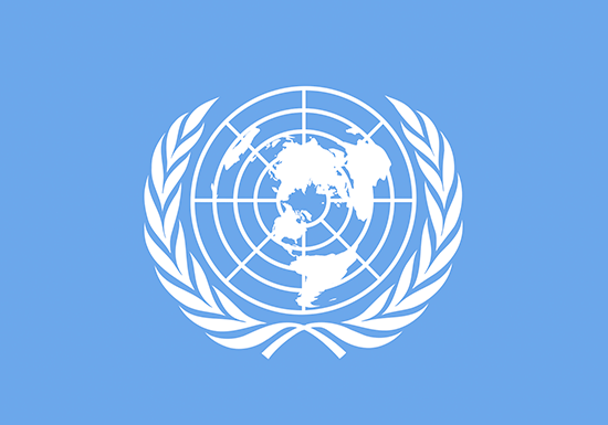 International organization UN